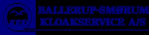 logo-bskloak
